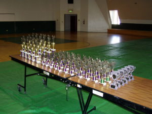 Camp Awards