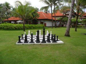 chess-400283_1920